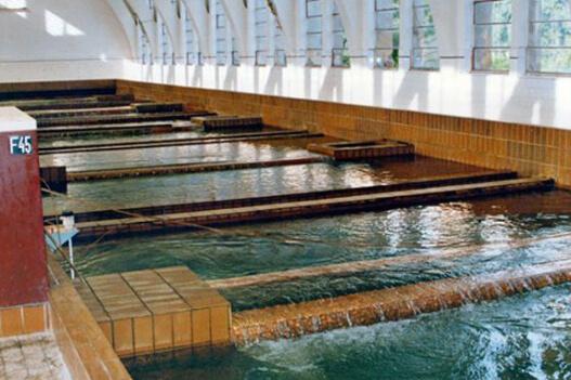 JKP Beogradski vodovod i kanalizacija – ISO 31000